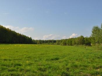 Коттеджный поселок Лесная подкова